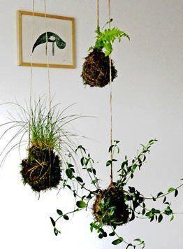 Build Your Own String Garden in 7 Steps - GOOD