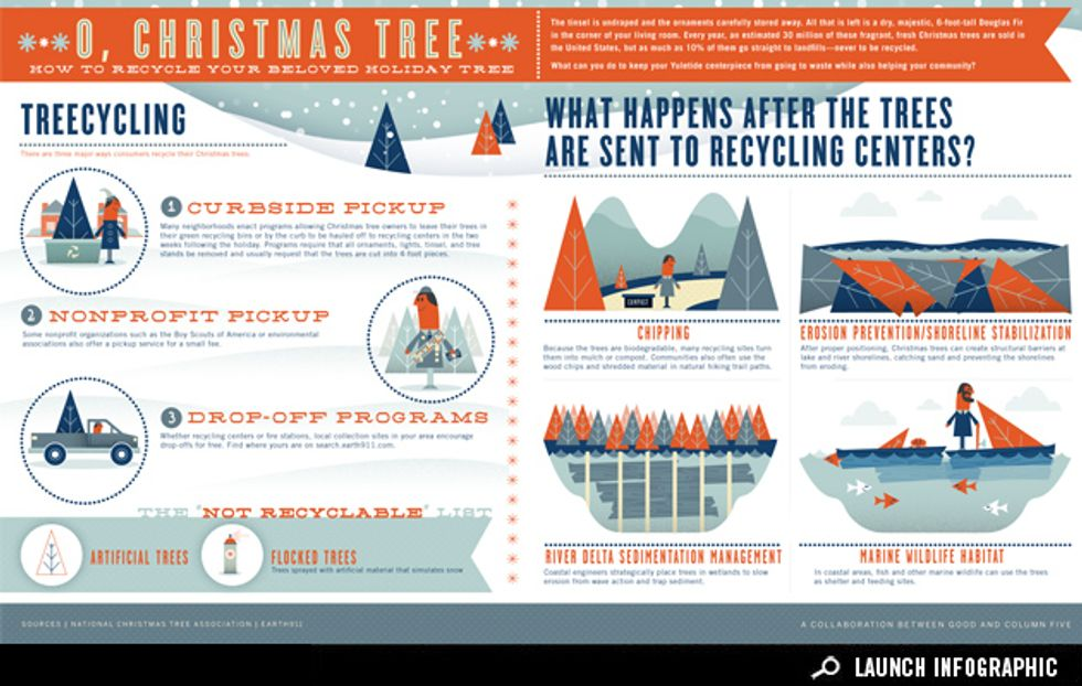 Infographic: How to Recycle Your Christmas Tree