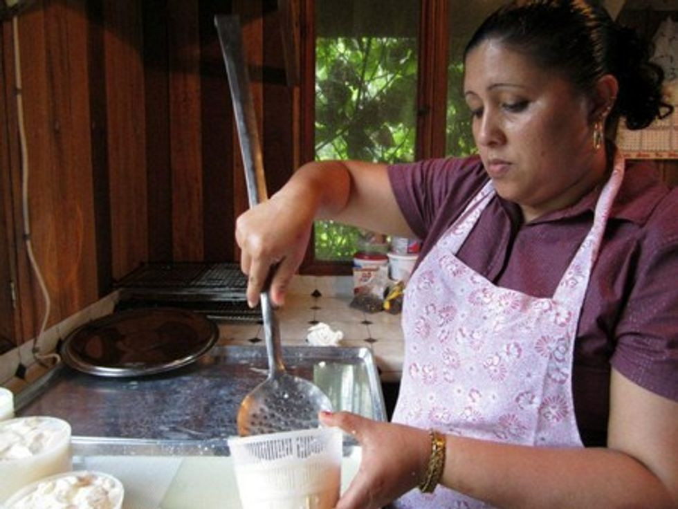 Making Impossible Cheese In Belize