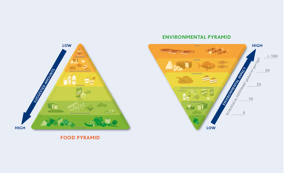 The Double Food Pyramid - GOOD