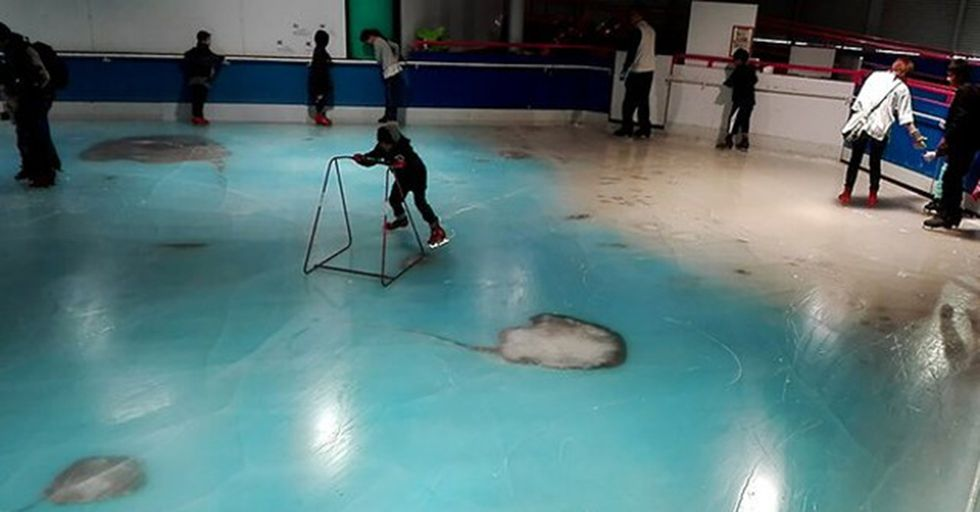 Japanese Theme Park Apologies For Intentionally Filling Frozen Rink With 5,000 Dead Fish
