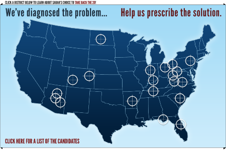 Giffords on Palin's Crosshairs Map:
