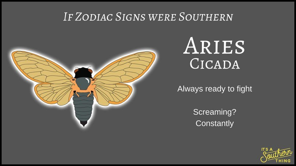 If Zodiac Signs Were Southern