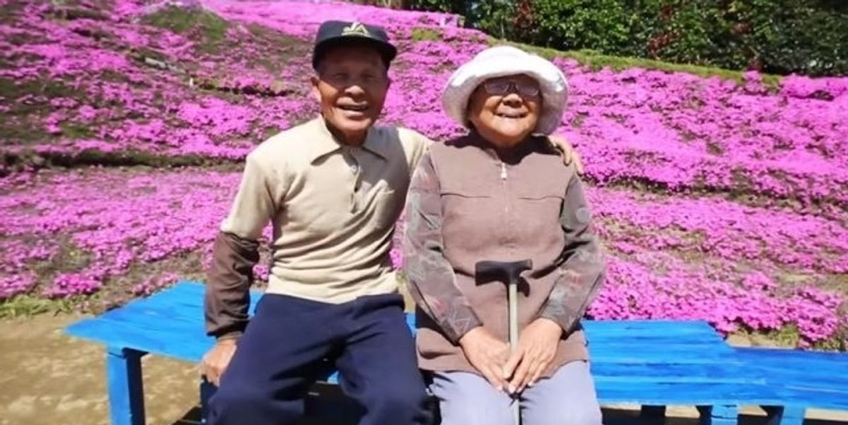 Husband plants thousands of flowers for his blind wife to smell.