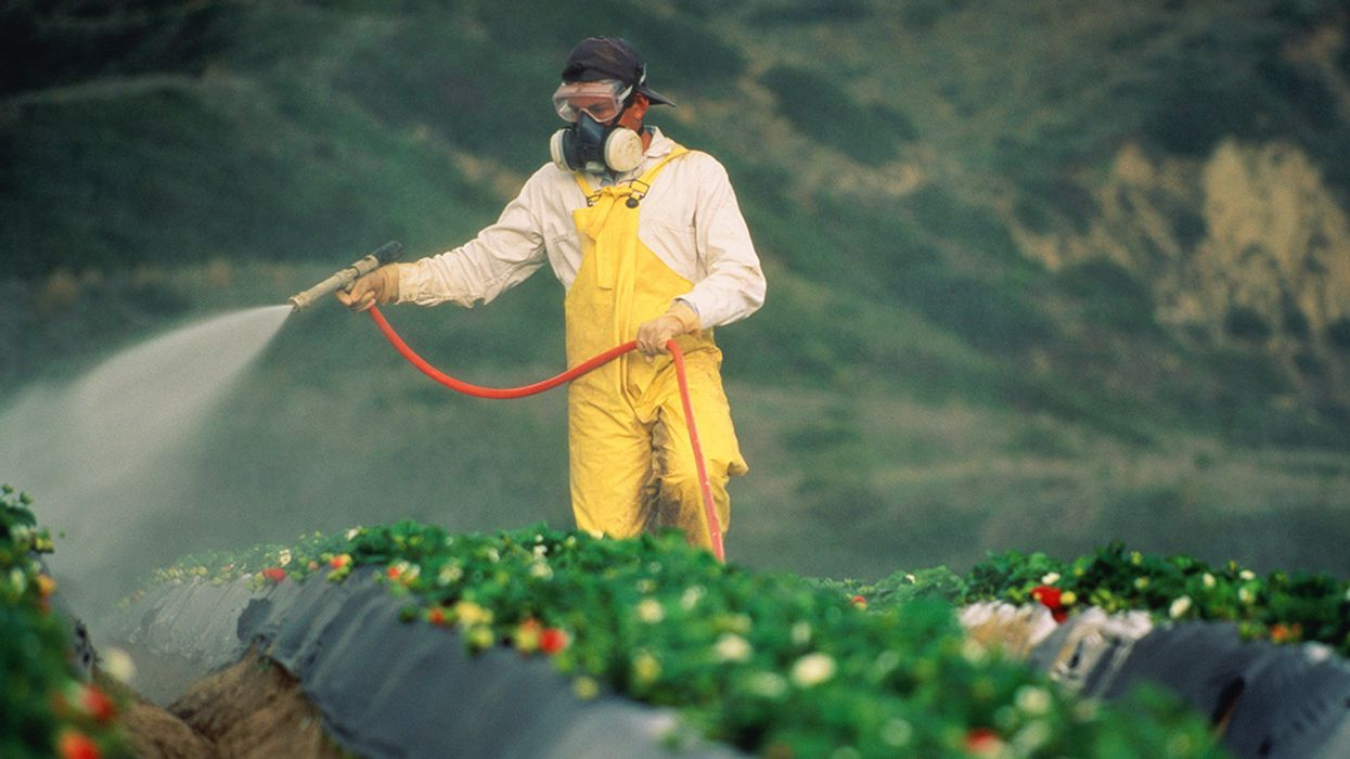 Trump's EPA Won't Ban Brain-Damaging Pesticide