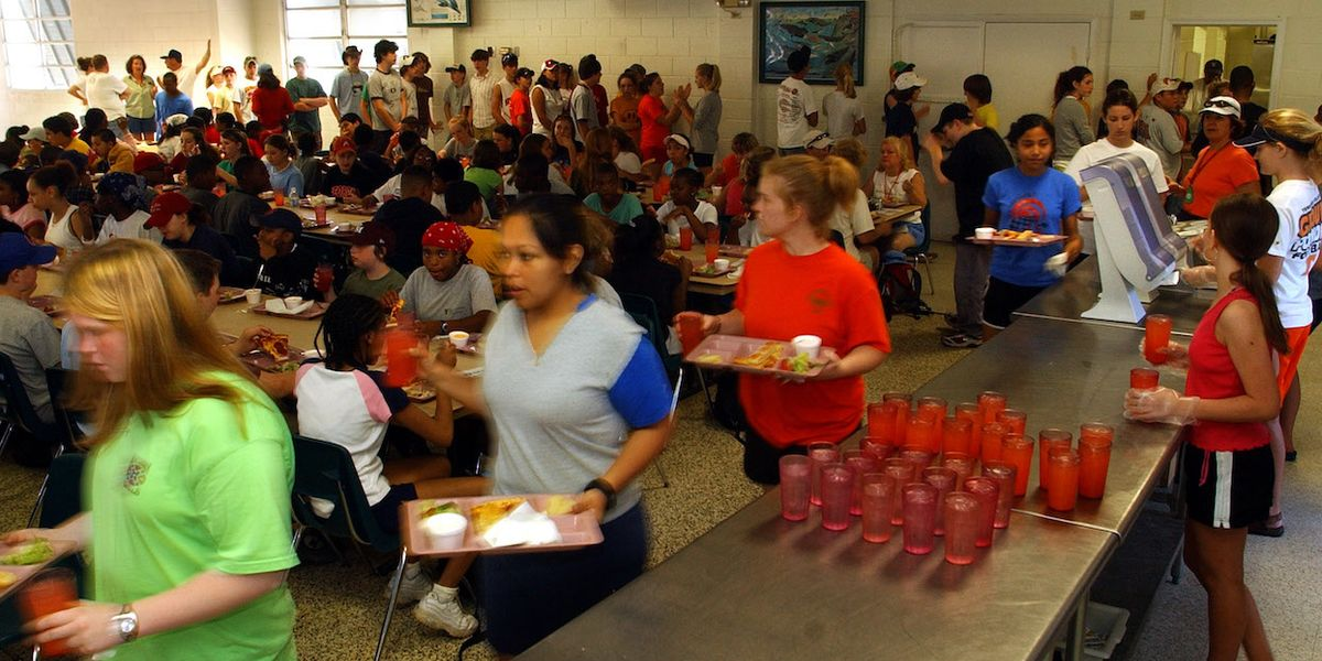 BPA substitutes linked to obesity in children and teens