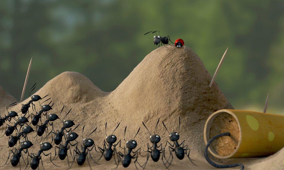 Minuscule - La valle delle formiche perdute