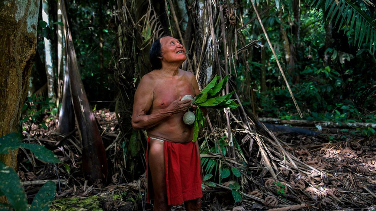 Gold Miners Murder Indigenous Leader, Force Villagers in Brazil's Amazon to Flee