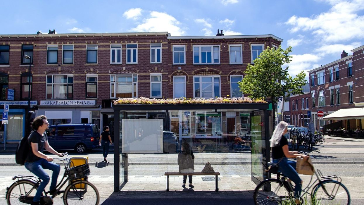 Tiny parks for bees line the streets of this Dutch city