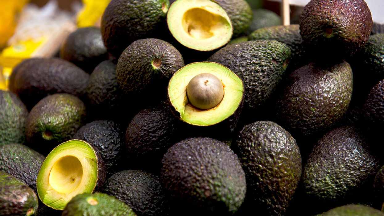 Scientists Crack the Genetic Code of the Hass Avocado