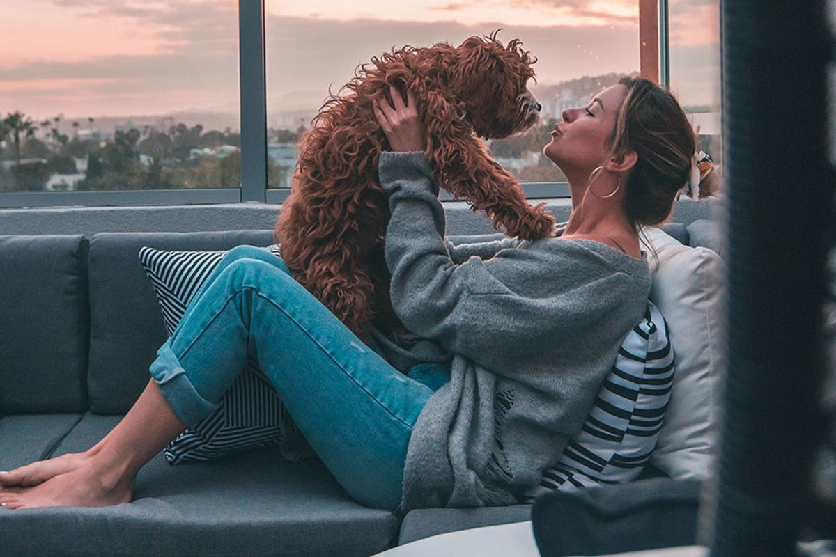 Dog owners are more likely to kiss their dogs than their significant others