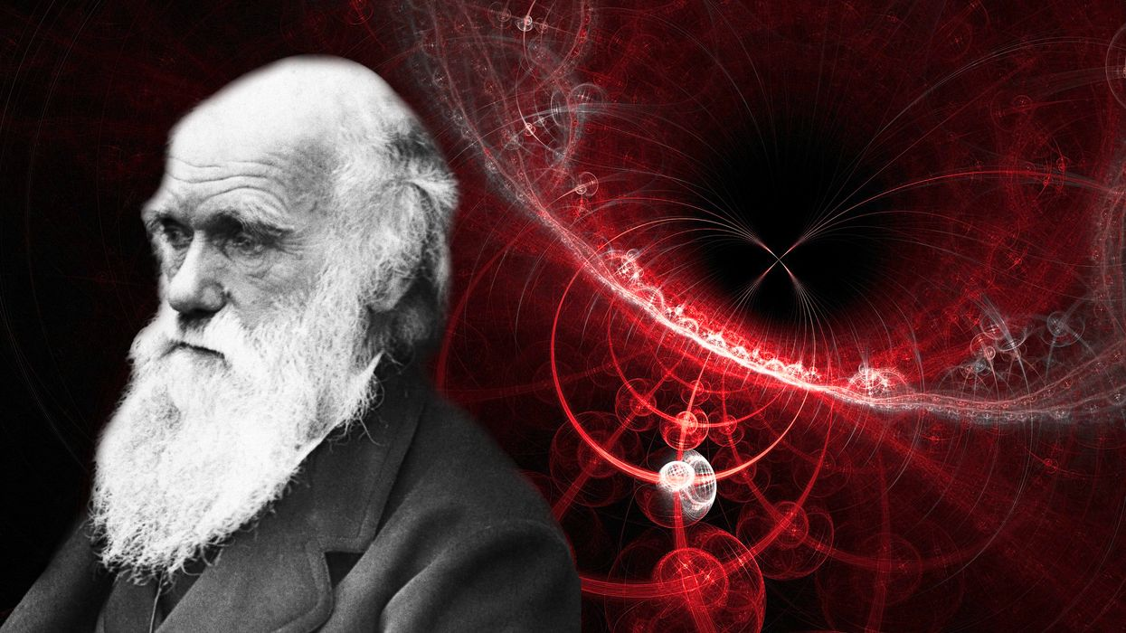 Quantum Darwinism, which may explain our reality, passes tests