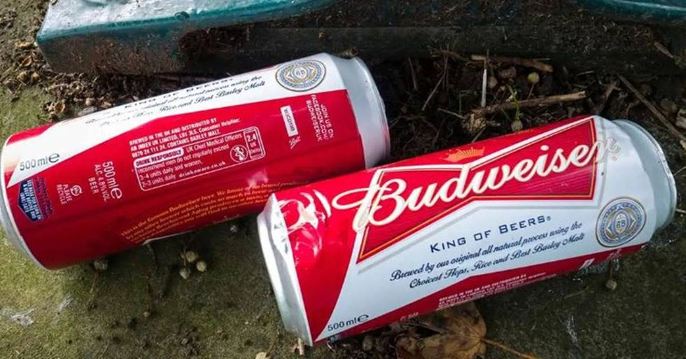 Budweiser now brews their beer with 100% wind energy