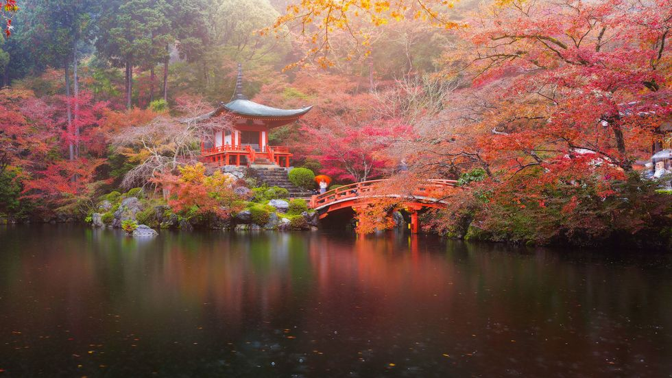 11 Beautiful Japanese Words That Don't Exist In English
