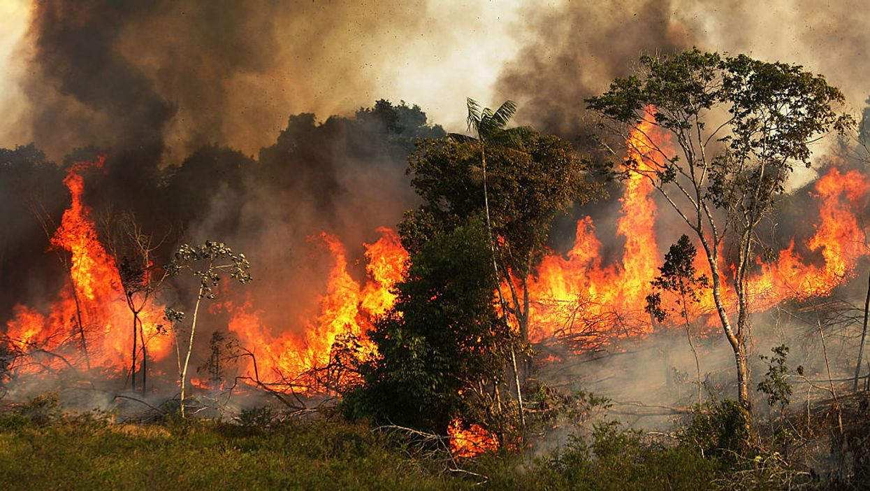 NASA, scientists respond to climate change hysteria around Amazon fires