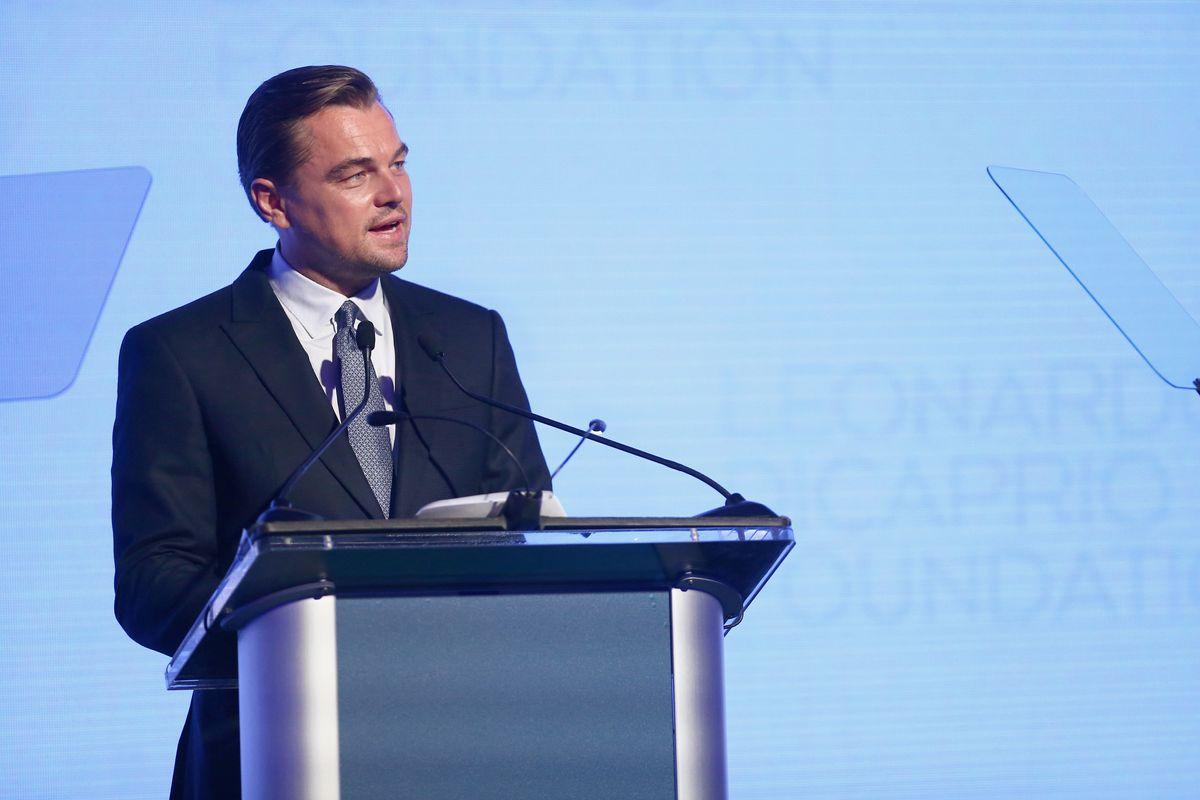 Maybe Leonardo DiCaprio Will Save the Amazon