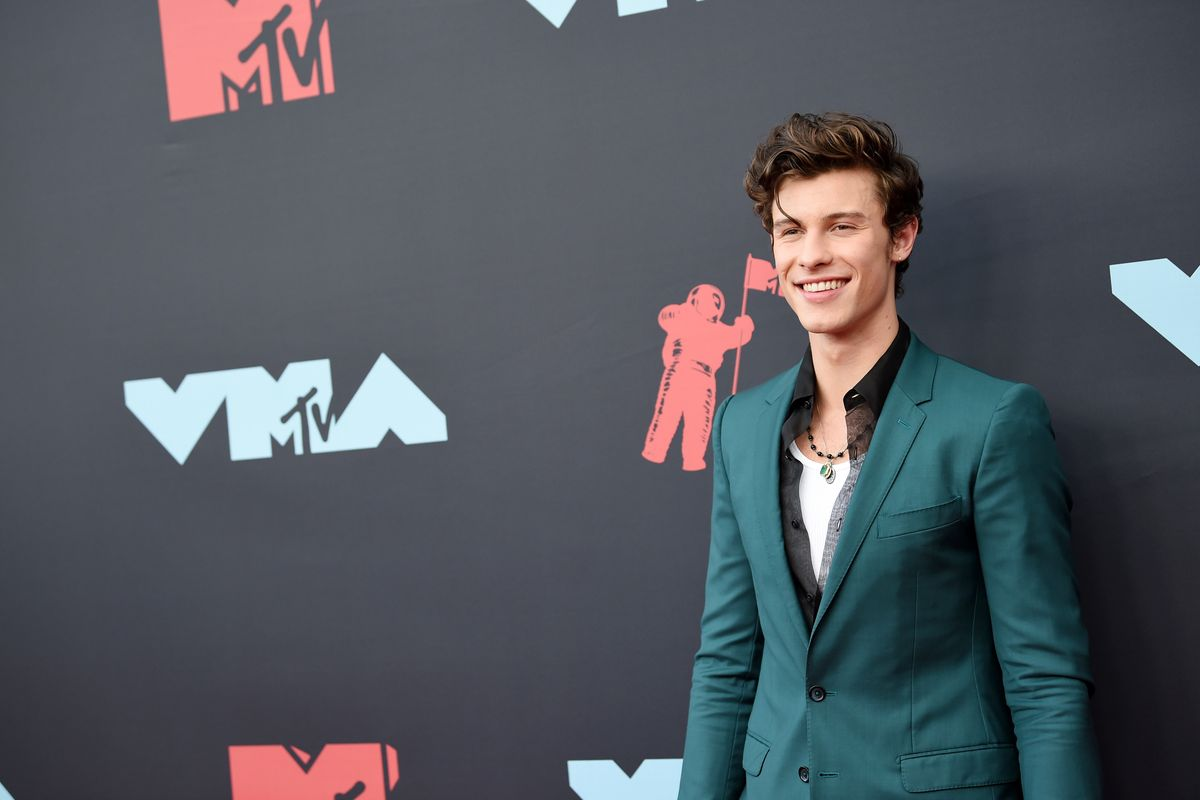 Shawn Mendes Walks MTV VMAs Red Carpet Alone