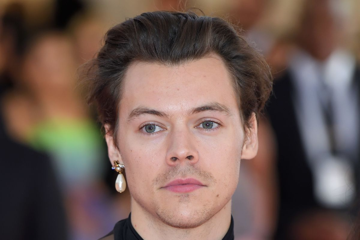 Harry Styles Stans Hate His New Haircut