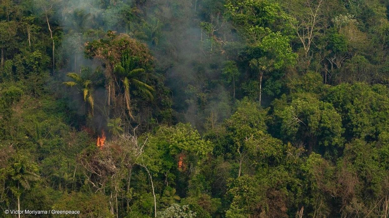 Brazil's Satellite Agency is Back Online: Fire Hotspots have Doubled