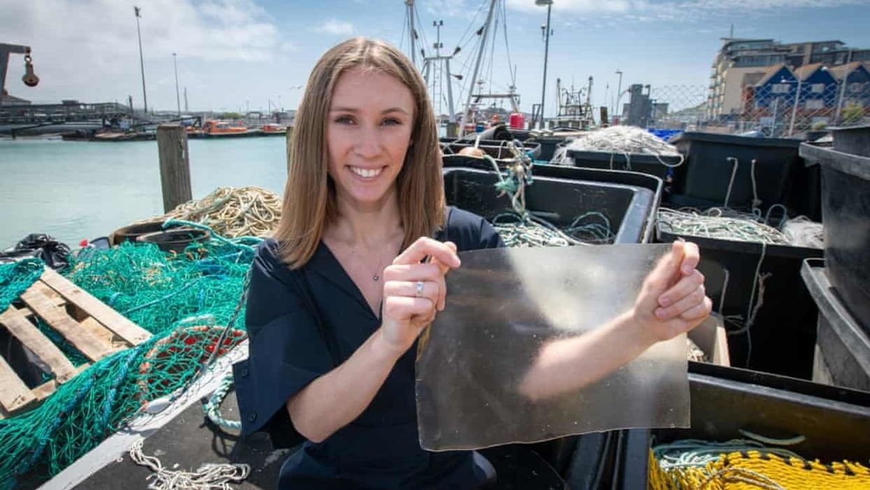 Bio-plastic made from fish scales wins U.K. James Dyson award