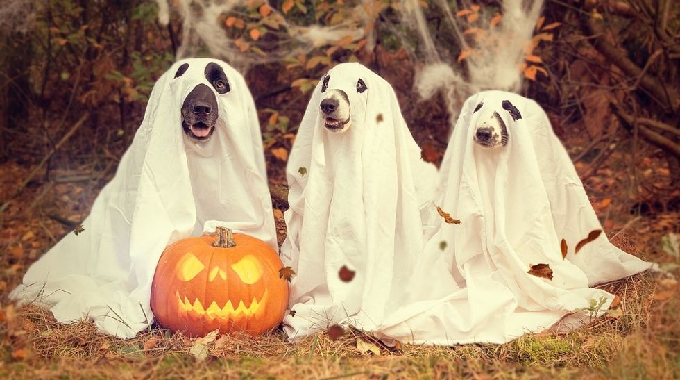 10 Reasons I'm Excited For Halloween