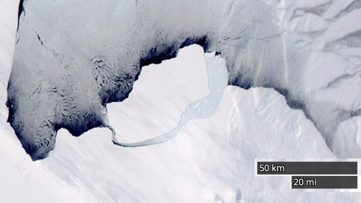 Antarctica Just Lost a 347 Billion Ton Iceberg, but This Time the Climate Crisis Is Not to Blame