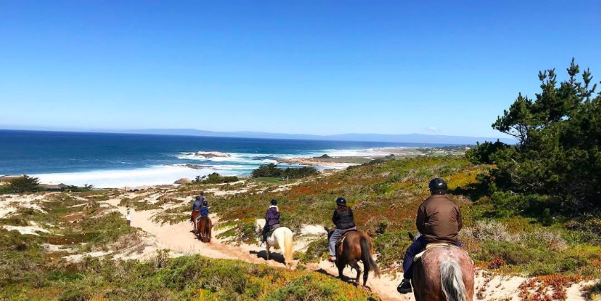 4 Places To Ride Horses On The Beach In