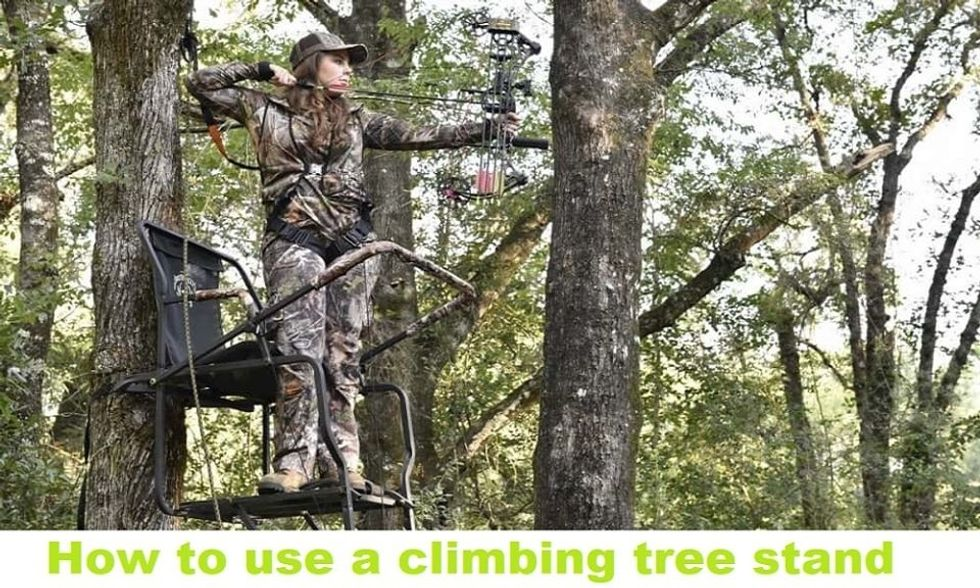How to use a climbing tree stand?