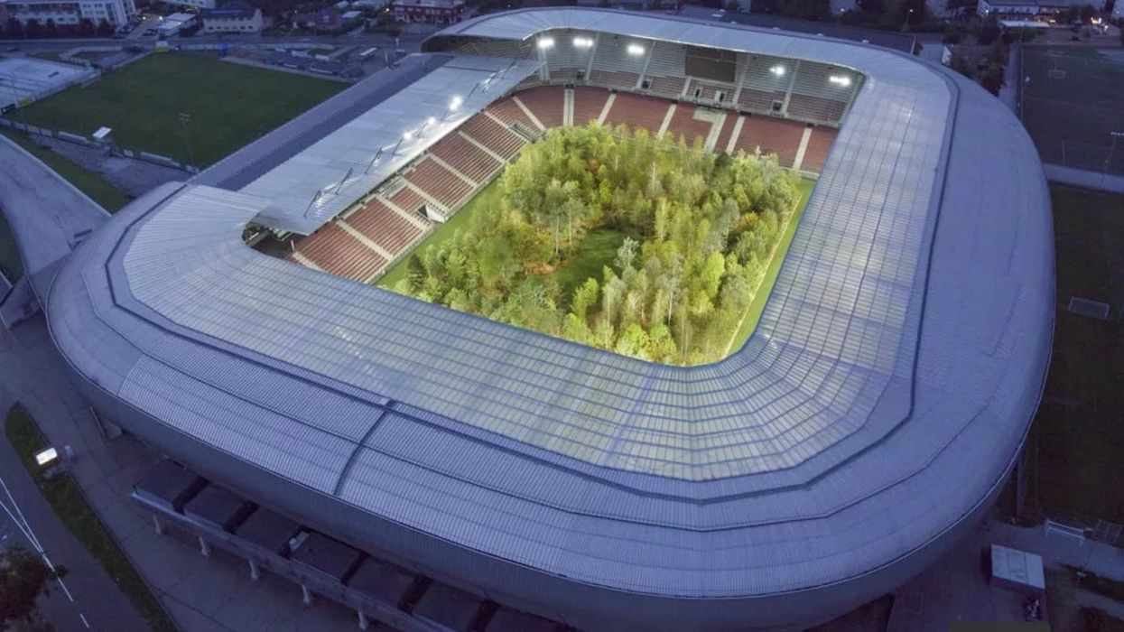 This Football Stadium Was Transformed Into a Living Forest In Dystopian Future Art Installation