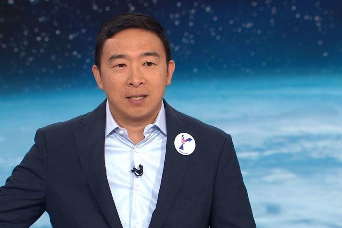 """Presidential candidate Andrew Yang is calling for a """"Green Amendment"""" to the Constitution"""