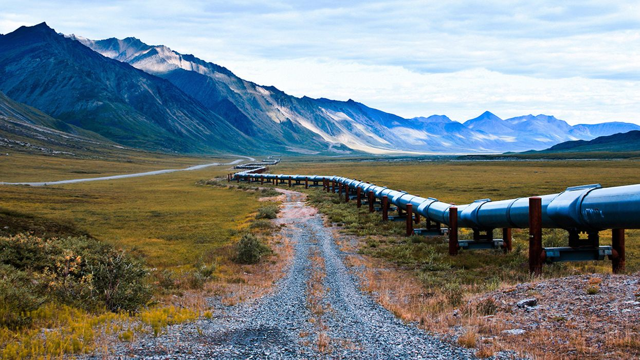 Trump Moves to Open 1.5 Million Acres of Alaskan Refuge for Oil Drilling By End of the Year