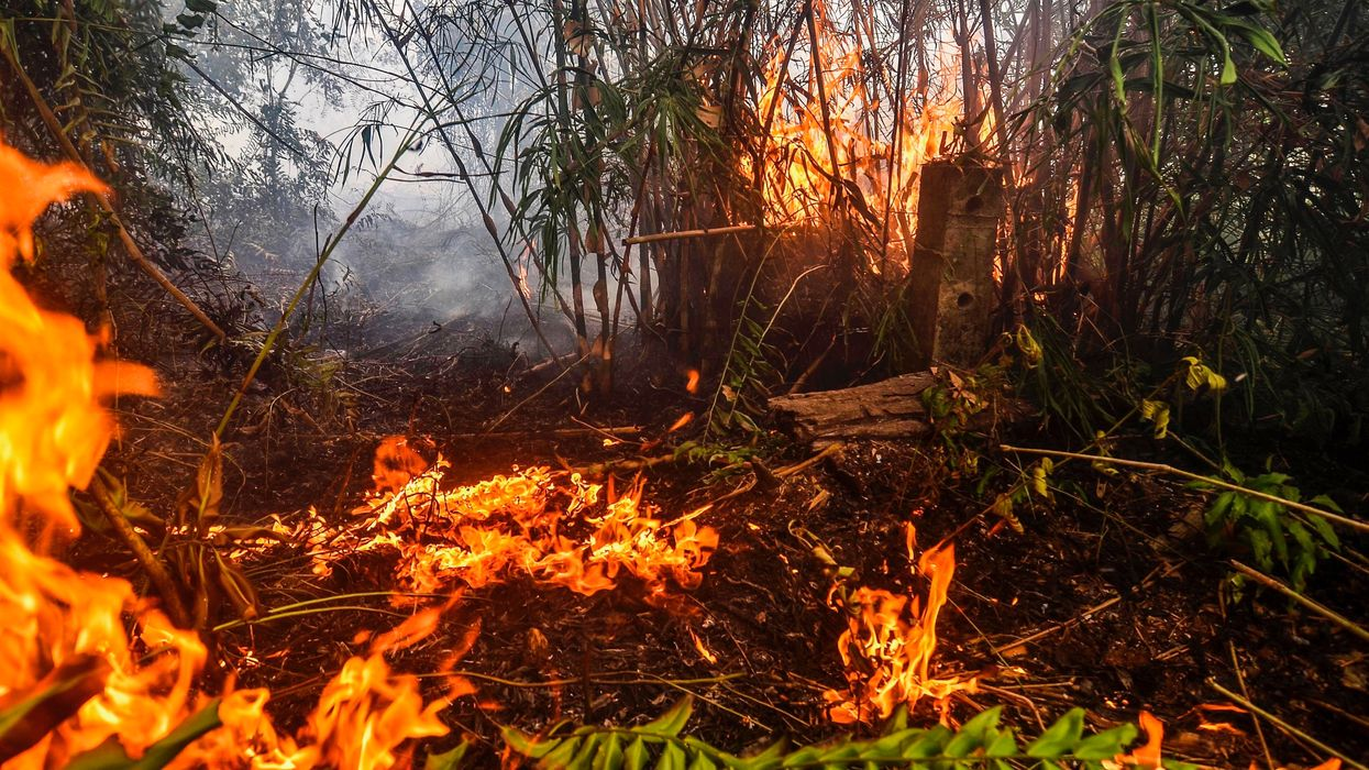 Fires Rage Across Indonesia, 200 Suspects Arrested