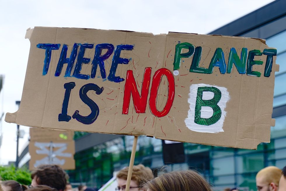 The Climate Strike and it's impact