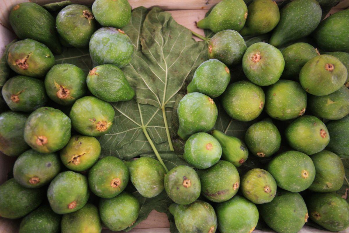 Fresco o secco, è un frutto sano. Ecco come sfruttare le sue proprietà «fichissime»