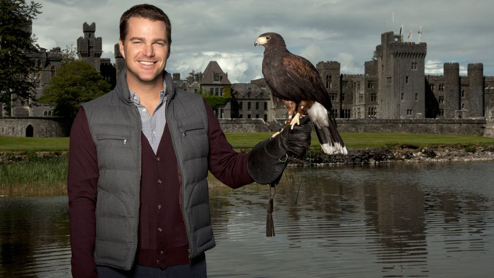 Chris ODonnell of NCIS Los Angeles in a gray puffy vest with a hawk on his finger