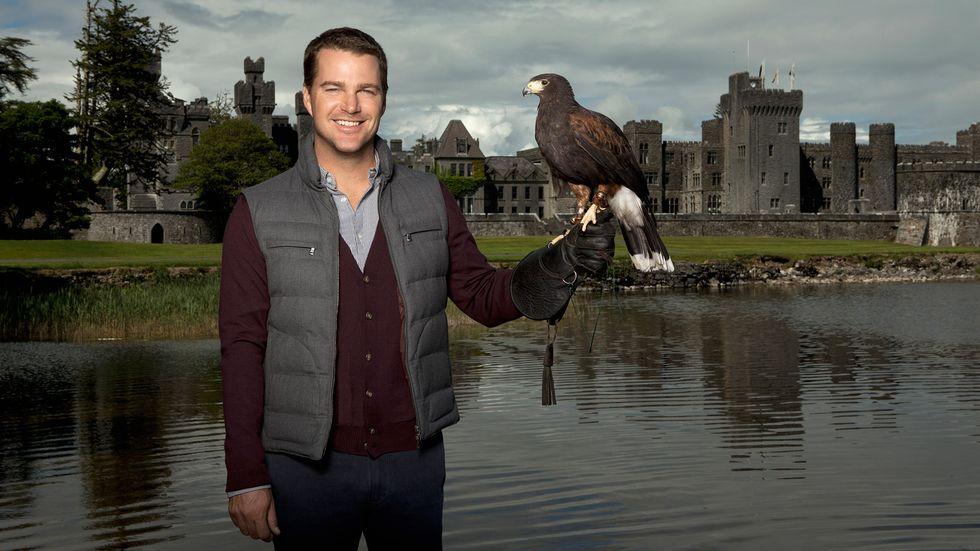Chris ODonnell holding a hawk