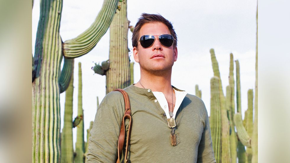 Michael Weatherly in a green shirt standing in front of cacti