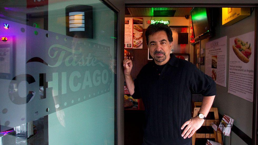 Joe Mantegna at Taste Chicago