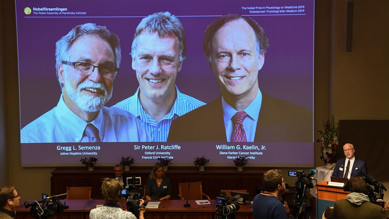 Hypoxia researchers win 2019 Nobel Prize in Medicine