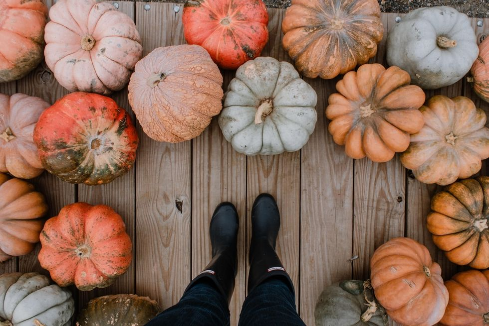 7 Things To Do In October If You're The Girl Who Will Do Literally Anything, Except Watch A Horror Movie