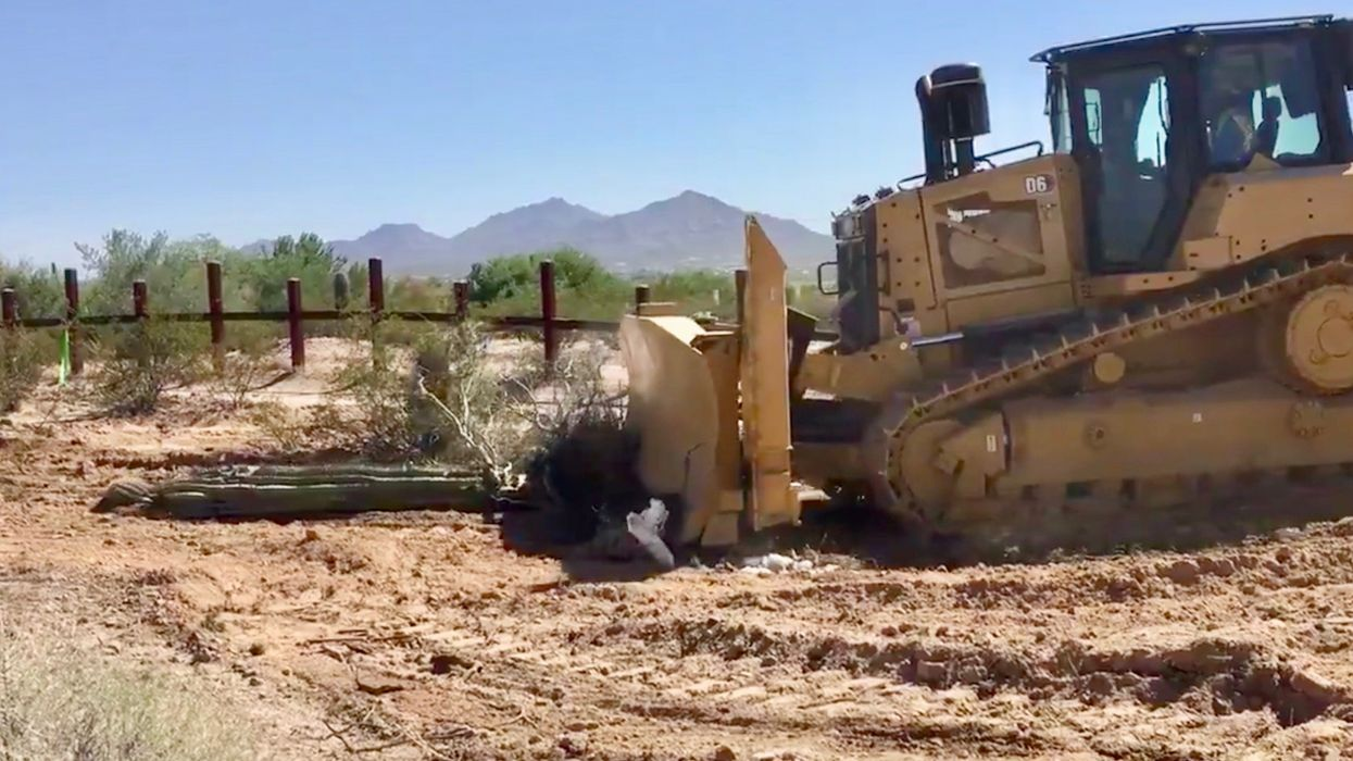 Watch Bulldozers Plow Protected Cacti for Trump's Border Wall