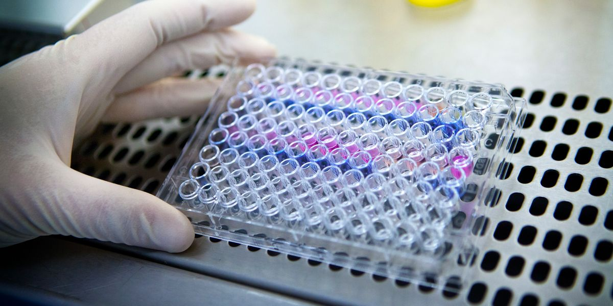 Breast Cancer Vaccine Could Be Available In 8 Years Says Mayo Clinic Big Think