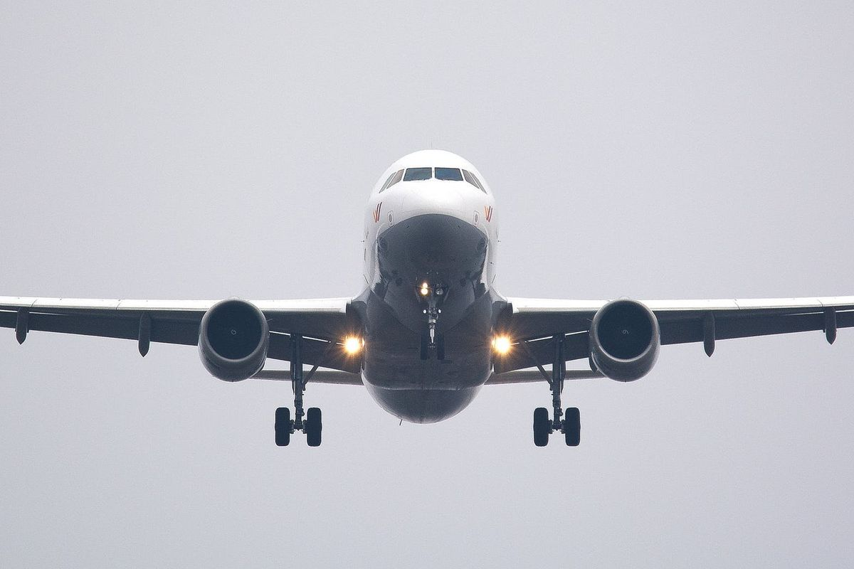 A report on climate change is calling to ban frequent flyer miles