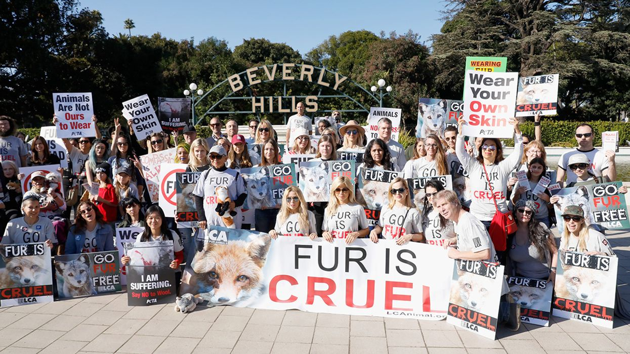 California Is the First State to Ban Fur Sales