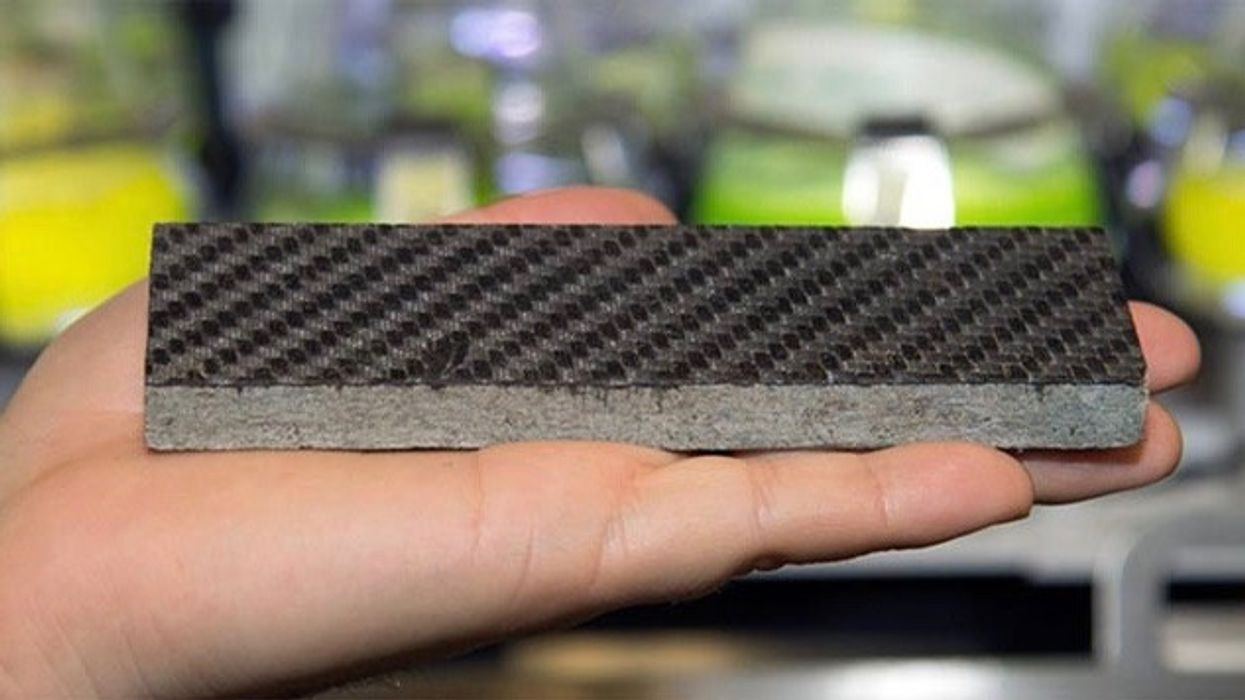 Researchers Turn Algae Into a Material as Hard as Steel