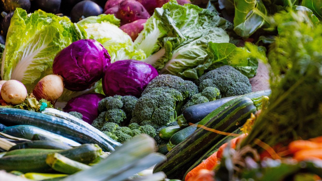 How Changes in Our Diet Can Help Mitigate Climate Change