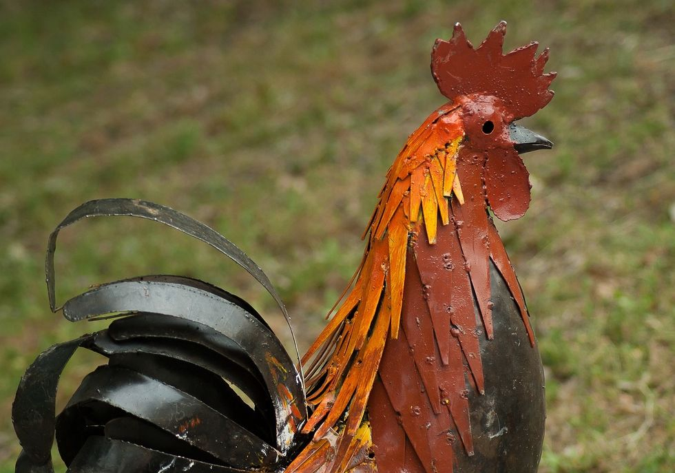 The Of Tale Of The Scavenger Hunt And The Metal Chicken