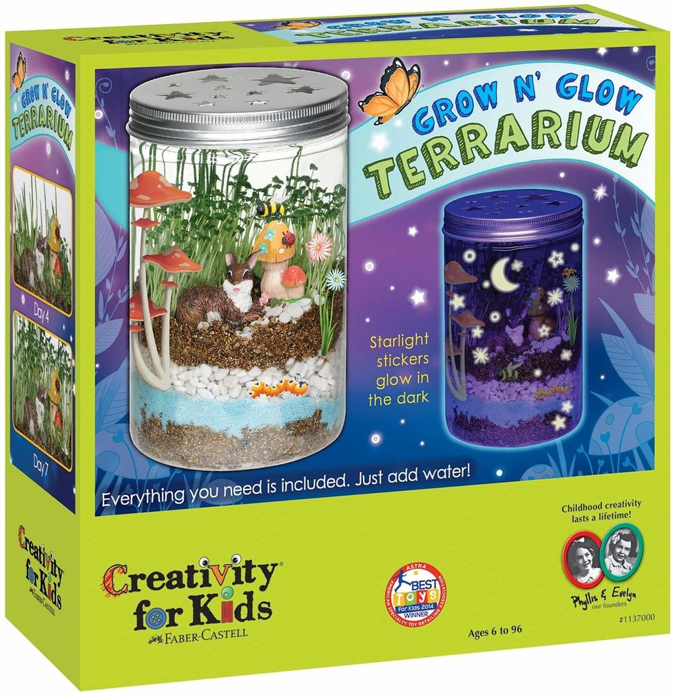 terranium kit for kids