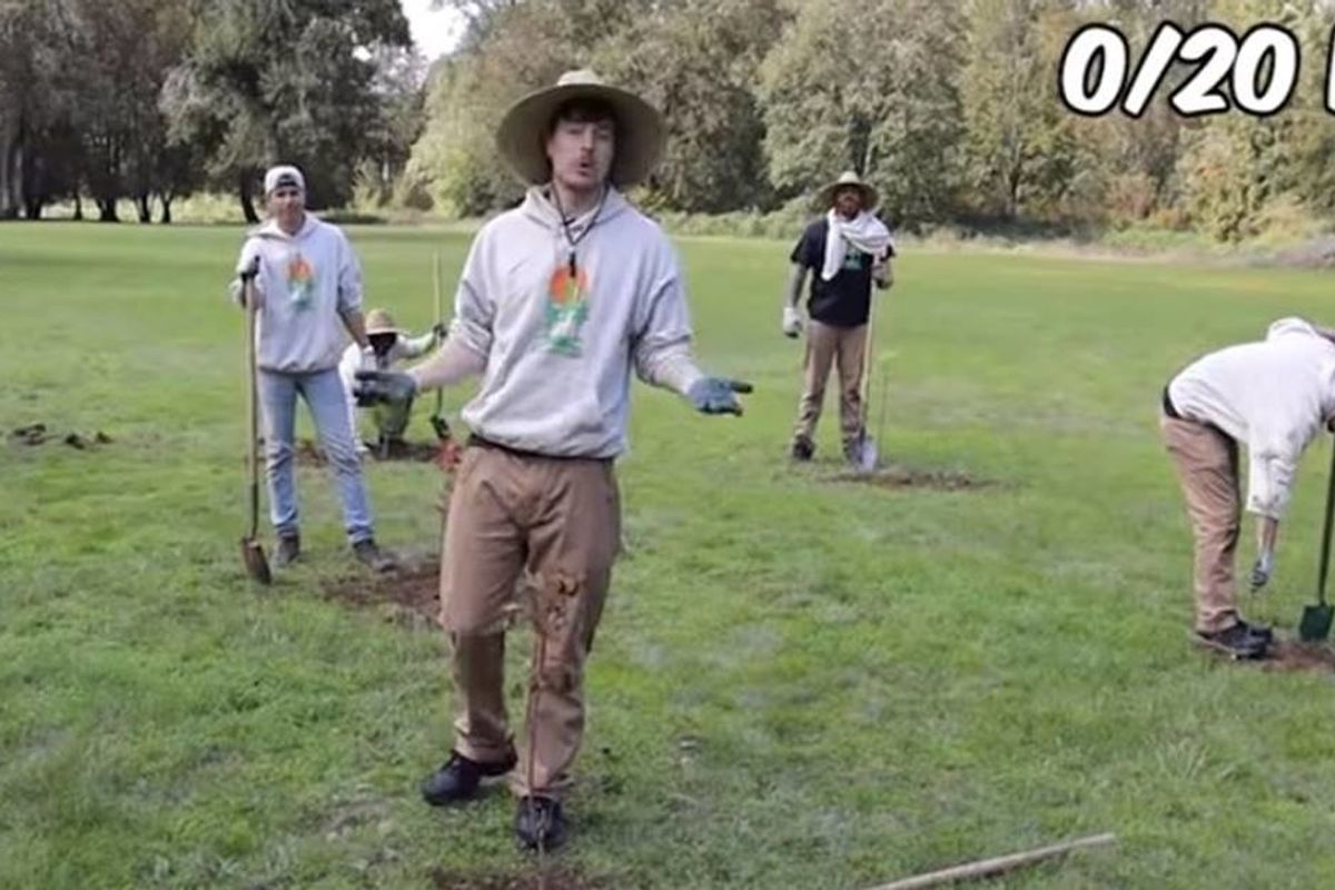 YouTubers joined together to combat climate change by planting 20 million trees