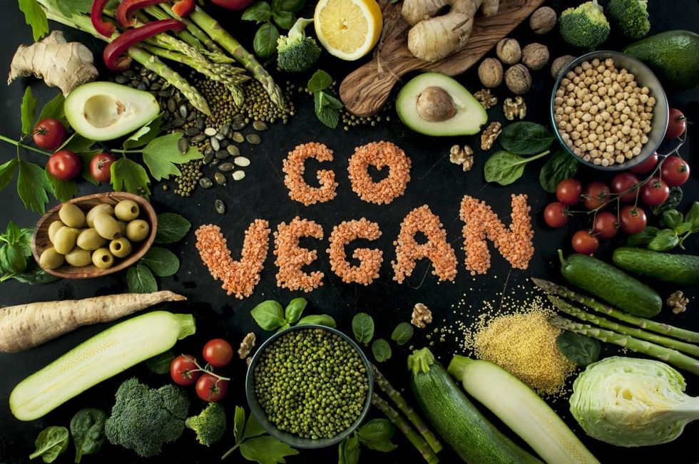 Why Going Vegan Can Help Animals, The Environment, And Yourself